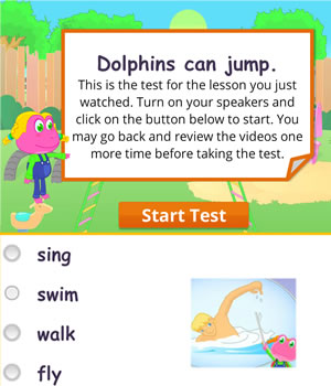 actions-dolphins test