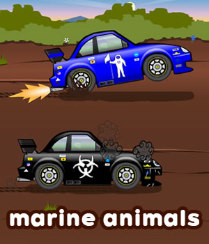 marine-animals game