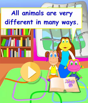 marine-animals video lesson