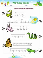 Pets Classroom Survey